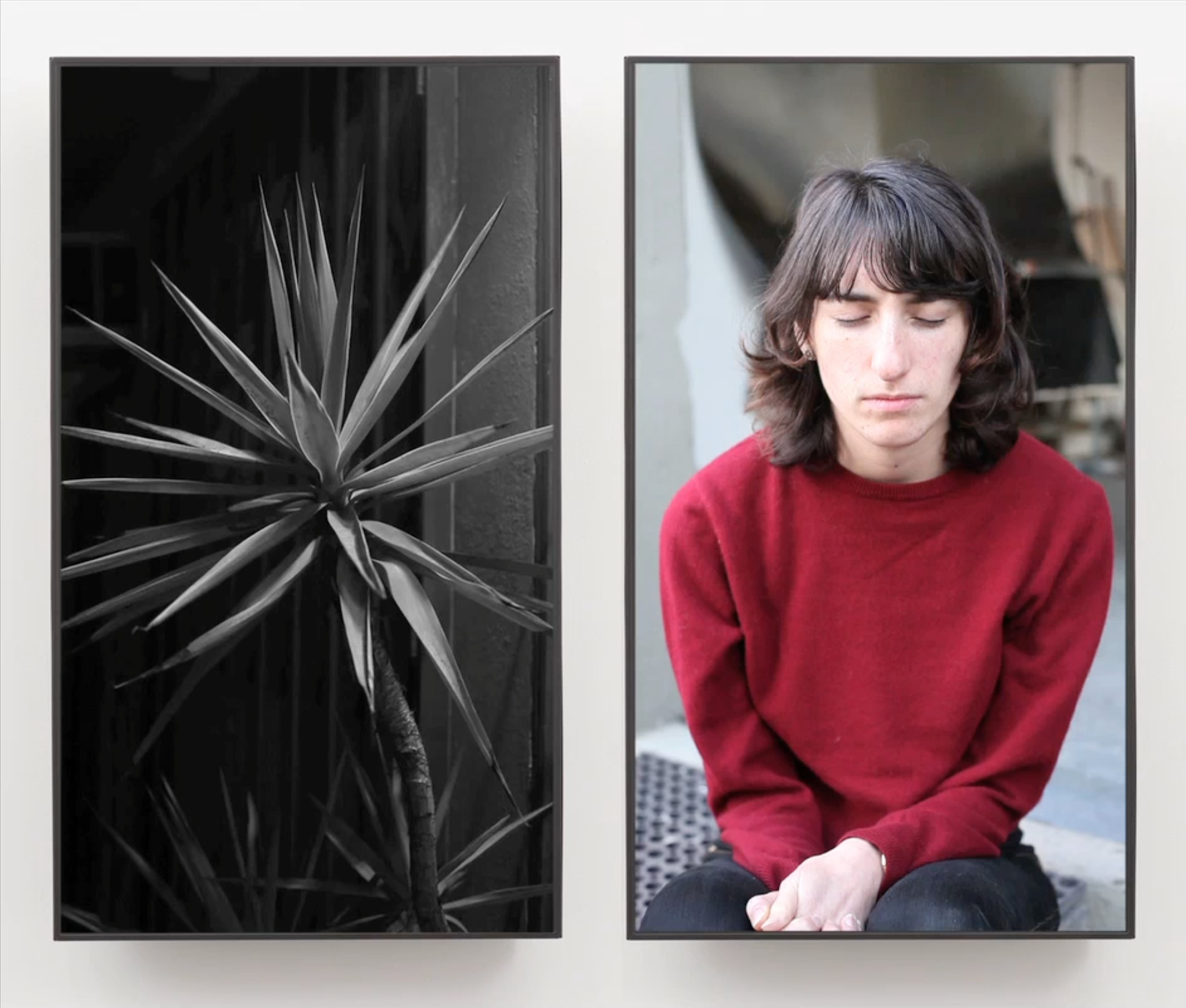 Owen Kydd, Yukka Black and White and Marina, 2012. As seen on a MacBook Pro, 2014.