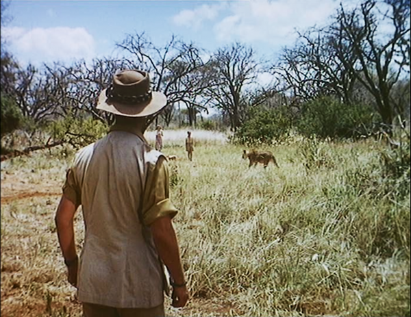 """Figure 3 Figs. 1-3: In """"The Virtues and the Limits of Montage"""" Bazin analyzes this scene in Where No Vultures Fly (1951), in which a young child encounters a seemingly lost cub, while the cub's mother approaches menacingly from behind. As Bazin describes it, """"Up to this point everything has been shown in parallel montage [Figs. 1-2] and the somewhat naive attempt at suspense has been quite conven-tional."""" However, in Fig. 3, """"suddenly, to our horror, the director abandons his montage of separate shots that has kept the protagonists apart and gives us instead parents, child, and lioness all in the same full shot."""" At this point, """"trickery is out of the question, """" and the shot thus """"gives immediate and retroactive authenticity to the very banal montage that has preceded it."""""""